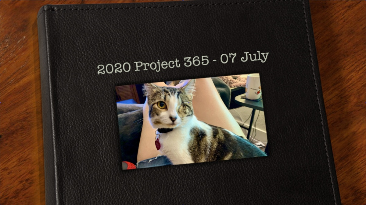 365 Project – July2020