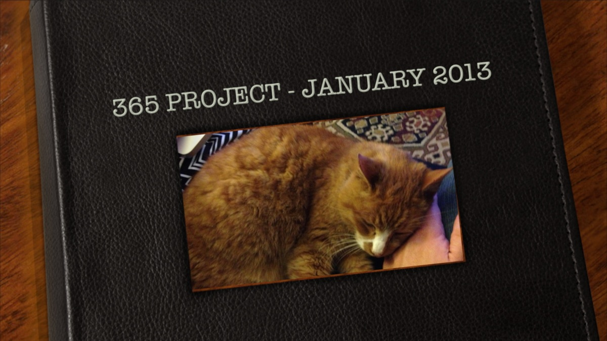 365 Project – January 2013