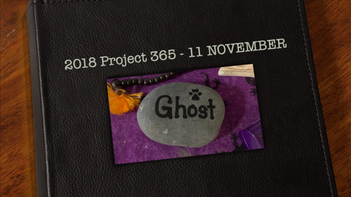 2018 Project 365 – 11 November (not every day)
